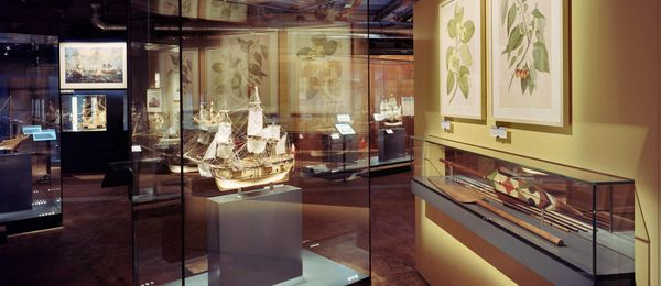 A view of the Shipping exhibition. There are various display cases – some on walls, some free-standing – containing model ships and other objects. Drawings of plants hang on one wall.